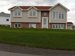 House for sale in Arnolds Cove NL