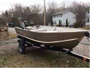 Boat for sale - 2011