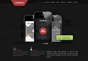 Website design package for sale Vancouver in Wordpress Shopify