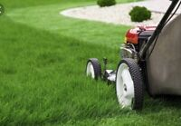 EXTREMELY cheap lawncare