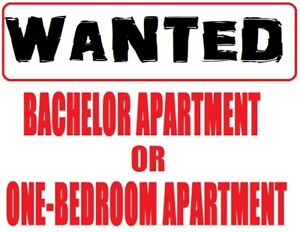 ONE BEDROOM APARTMENT OR BACHELOR APARTMENT