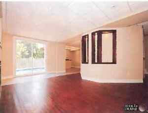bright and spacious bsmt apt in Bolton