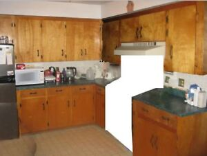 Kitchen Cabinets Cupboards w/ countertop for camp cottage garage