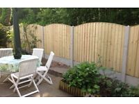 🏅Tanalised New Bow Top Feather Edge Fence Panels • Heavy Duty