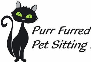 Pet Sitting / Pet Boarding for Cats