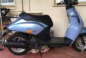honda today scooter $900 Norwood Norwood Area Preview