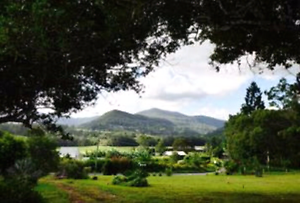 Wanted Land for lease or exchange for jobs Nimbin Lismore Area Preview