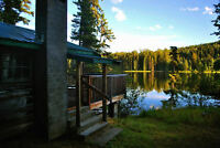 New Price! Waterfront Log Cabin on Excellent Fishing Lake