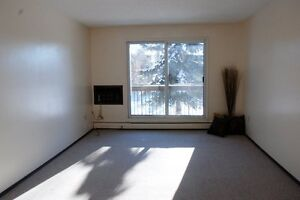 You can Rent 2 Bedrooms At $620. Plus free May rent. Hurry.