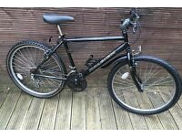 Adult Raleigh mountain bike