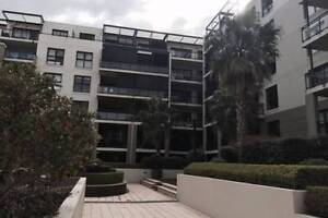 Room for Rent Meadowbank / Shepherds Bay NSW $300 PW Meadowbank Ryde Area Preview