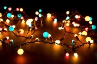 Christmas light instal from $150. 25 ft trees or bigger!!!
