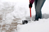 DO YOU NEED SNOW REMOVAL SERVICE?.... IN ETOBICOKE?