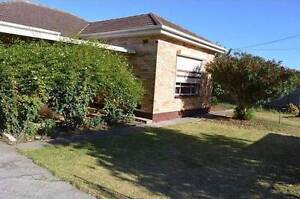 3 Bedroom House for Rent in South Plympton, Adelaide SA South Plympton Marion Area Preview