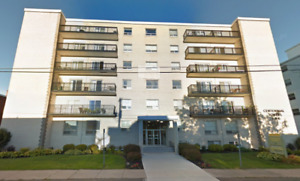 141 Cameron St - 2 Bdrm Apt - Utilities Included - for Nov 1st
