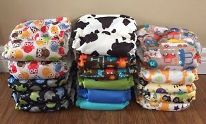 Cloth Diapers:  Blueberry Basix