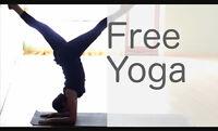 FREE YOGA!!!