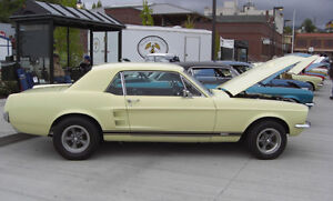 LOOKING FOR A 1967 FORD MUSTANG
