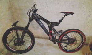 Quick sale. Specialized Big Hit DH.