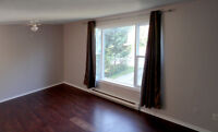 3 Bedroom Apartment in Trenton