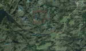 Forested land/Hunting area