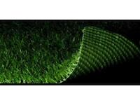Wanted. Small piece of AstroTurf. For dog toilet training. Seasalter Whitstable Kent