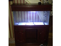 3ft fish tank display with cupboards