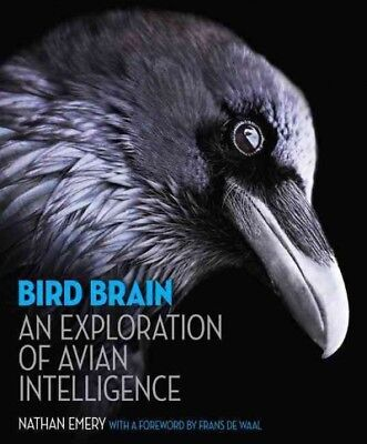 Bird Brain : An Exploration of Avian Intelligence, Hardcover by Emery, Nathan...