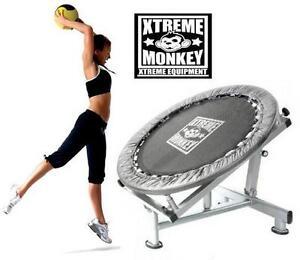 NEW MEDICINE BALL REBOUNDER - 117279185 - XTREME MONKEY  Fitness Equipment