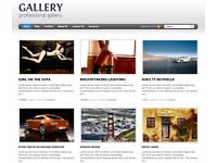 wordpress website construction, norwich