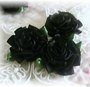 Large Ribbon Roses