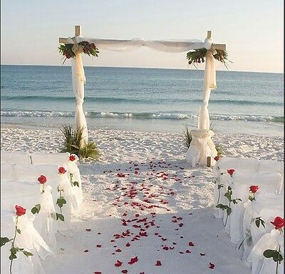 2000/1000pcs Multi Colors Silk Flower Rose Artificial Petals Wedding Decorations - Silk Flower Petals