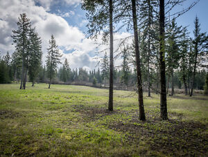 SALMON ARM/  20 Acres of Manicured Property