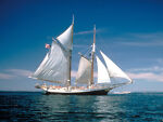 moving_sail_shoppe