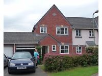 EXETER - MODERN 3 BED SEMI WITH GARAGE + EXTRA PARKING £895 MONTHLY