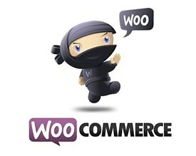 WooCommerce expert avaiable part time