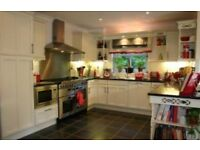 Rangemaster Professional oven used + rangemaster cooker hood included foc - quick sale £500