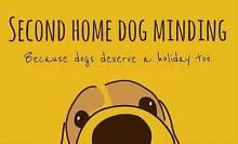 Second Home Dog Minding Melbourne CBD Melbourne City Preview