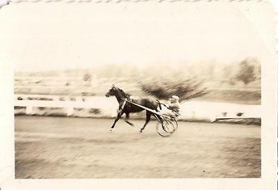 Man Behind Horse On Track Speeding By Sulky Cart Racing Vintage 1930s - Cart Racing Horses
