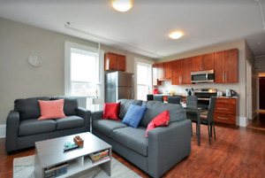 Gorgeous, Large 3 Bedroom in Central Location - APRIL ONLY