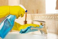 House & Apartment Cleaner