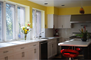 High Quality White Shaker Kitchen Cabinet/Cabinets on Sale