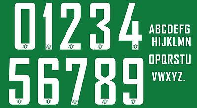 Build Your Own Football Shirt Nameset Chapecoense 2016 get 2 Numbers 10 Letters image