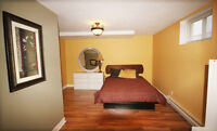 Executive Bachelor Apartment- Close to NBCC, Costco, Casino and