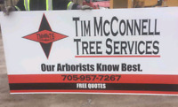 TREE SERVICE - pruning, removals, stump grinding