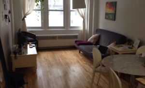 1-bdrm apt - Downtown - Fully furnished + utilities + A/C + wifi