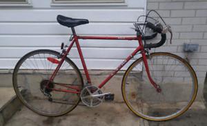 ►►►  Road Bike -  Large Frame