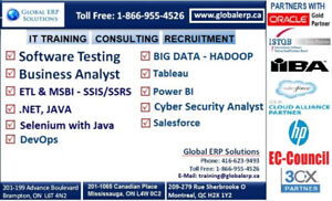 Business Analyst Training & Placements