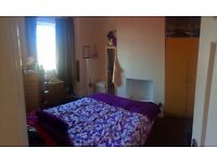Double room to rent in immaculate house share
