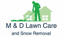 MD Lawn Care - Spring clean ups and mow.